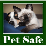 Pet Safe Carpet Cleaning