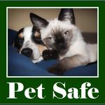 Pet Safe Carpet Cleaning