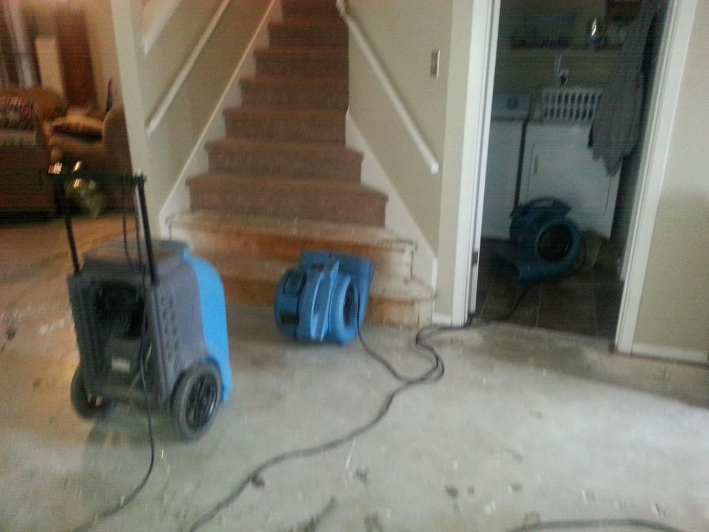 Carpet Cleaning In San Antonio Carpet Cleaning San Antonio Tx Carpet Cleaners San