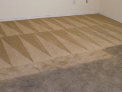 Carpet Before After Best Carpet Cleaning San Antonio