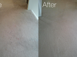 Before and After Carpet Cleaning Best Carpet Cleaning San Antonio