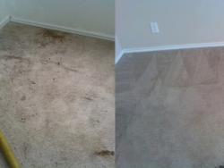 Room Before After Clean Carpet Cleaning San Antonio