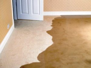 Water Damage Service San Antonio, TX by Best Carpet Cleaning Experts