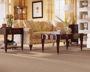 Carpet Cleaning Carpet Cleaning San Antonio San
