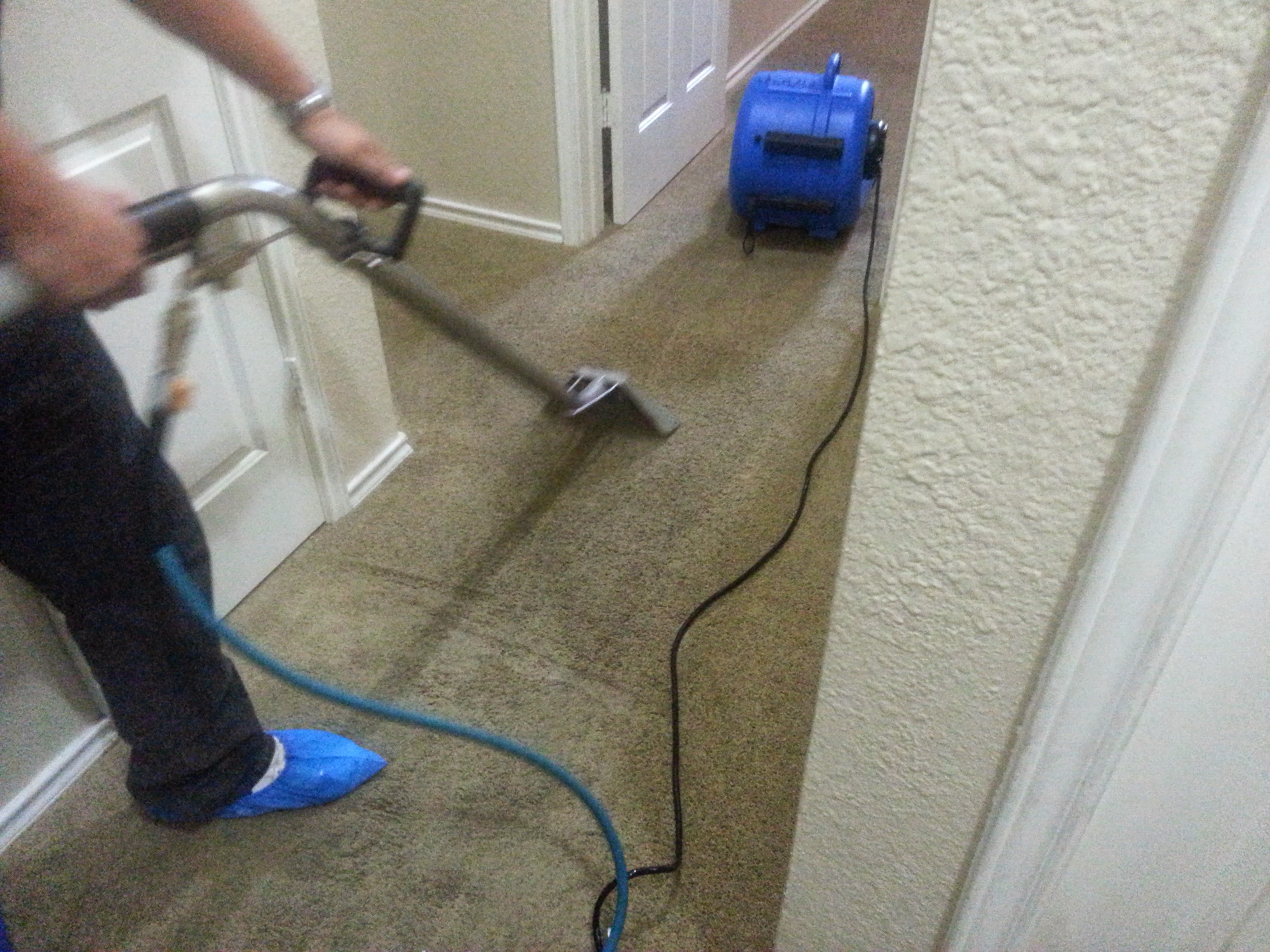 We Are The Best In Carpet Cleaning San Antonio San